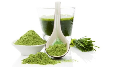 klamath-alge-B12-2